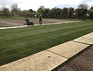 Sportsground and Landscape maintenance